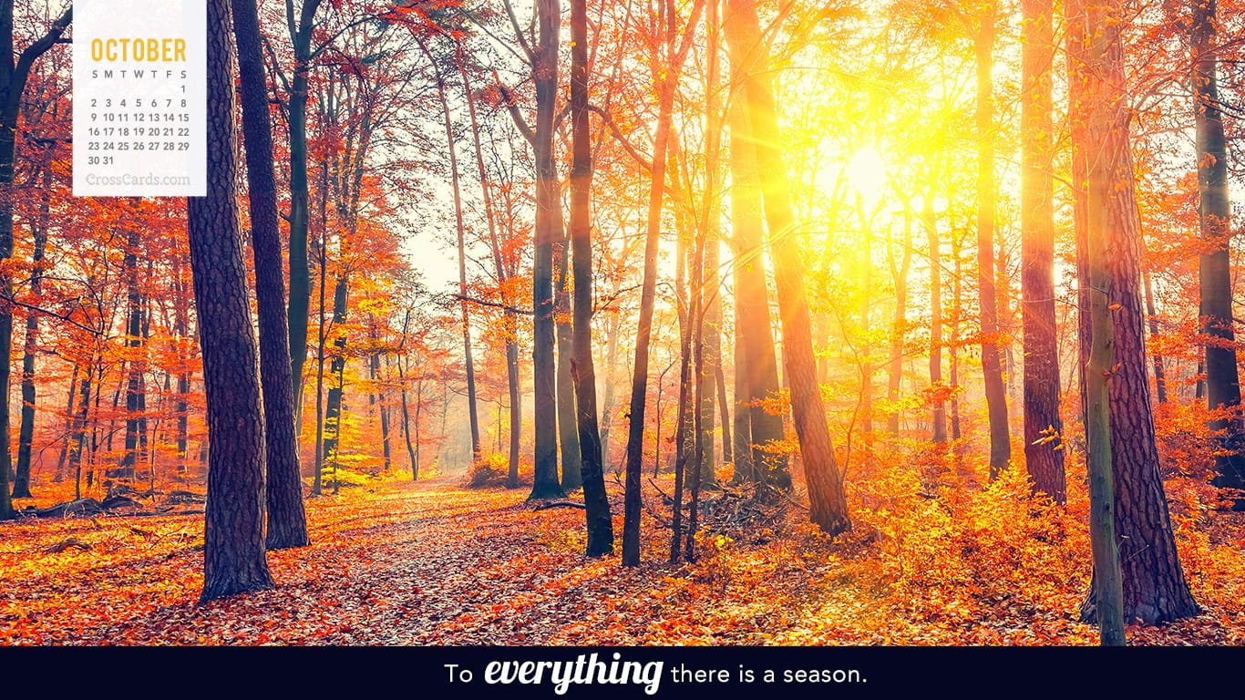 october 2016 to everything there is a season desktop calendar free october wallpaper. Black Bedroom Furniture Sets. Home Design Ideas