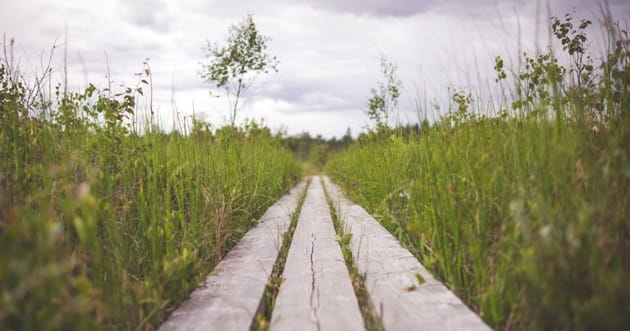 4 Biblical Steps that Will Help You Make Better Choices