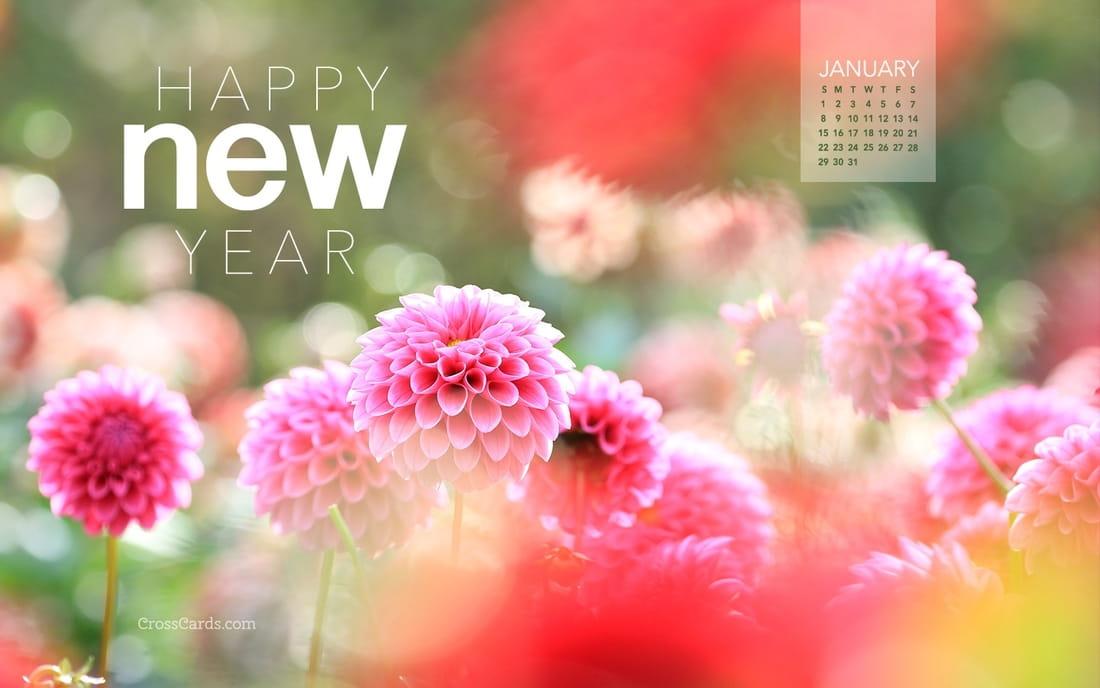 January 2017 - Happy New Year