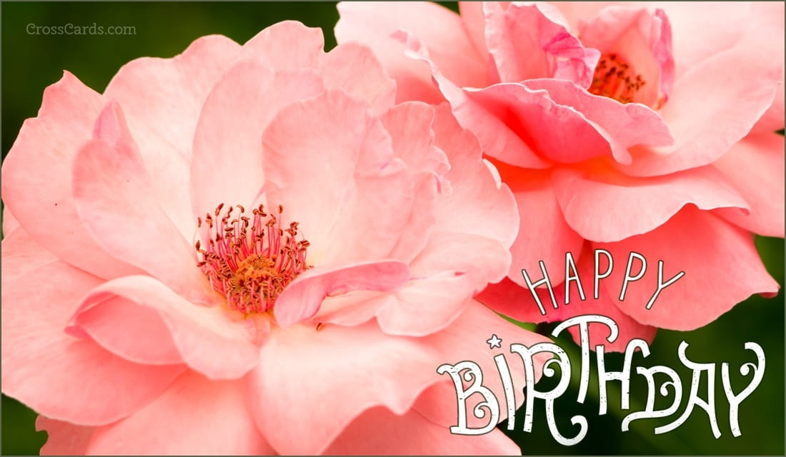 Free Birthday eCards The Best Happy Birthday Cards Online – Happy Birthdays Cards