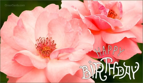 free birthday ecards  the best happy birthday cards online, Birthday card