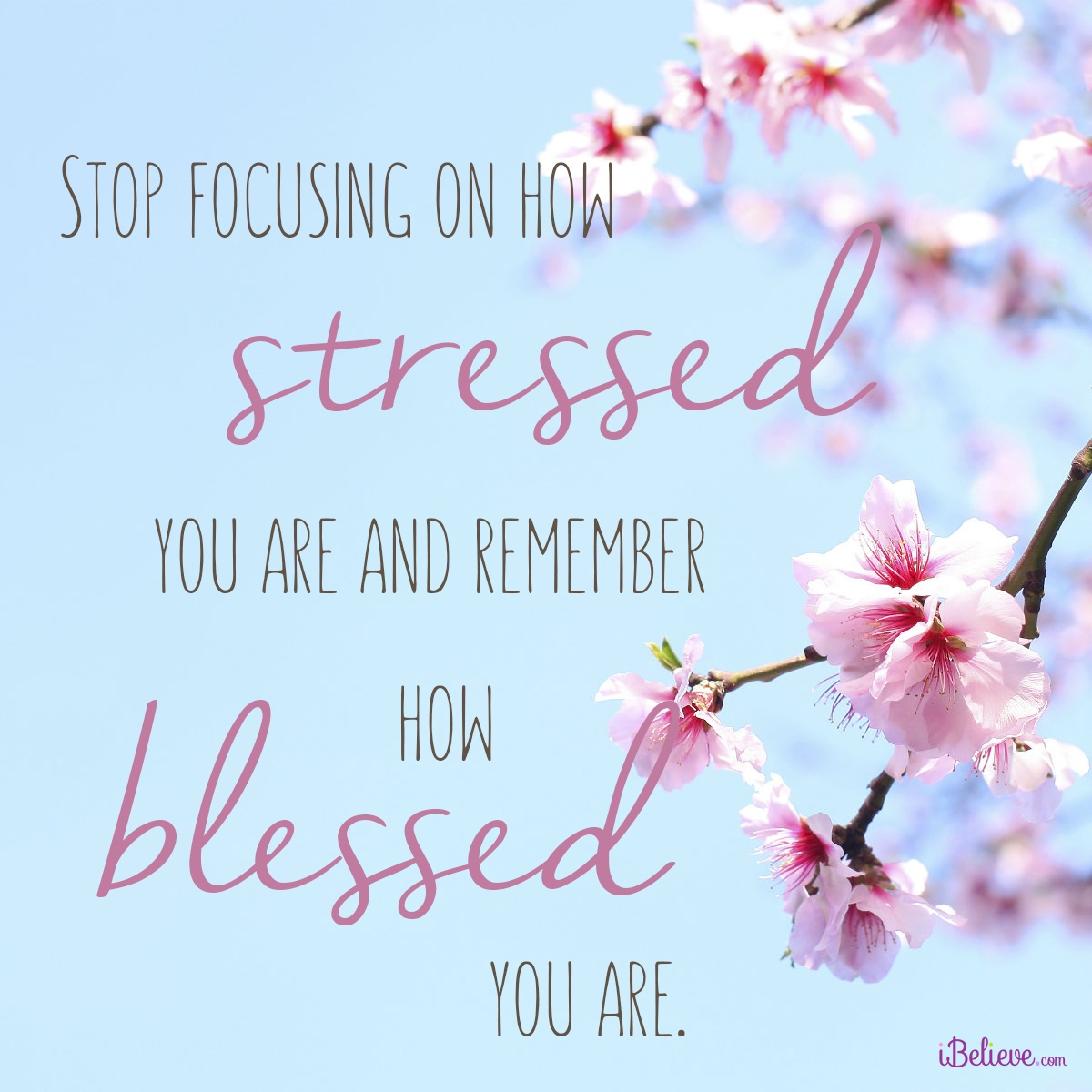 Stop Focusing on How Stressed You Are and Remember How Blessed You Are