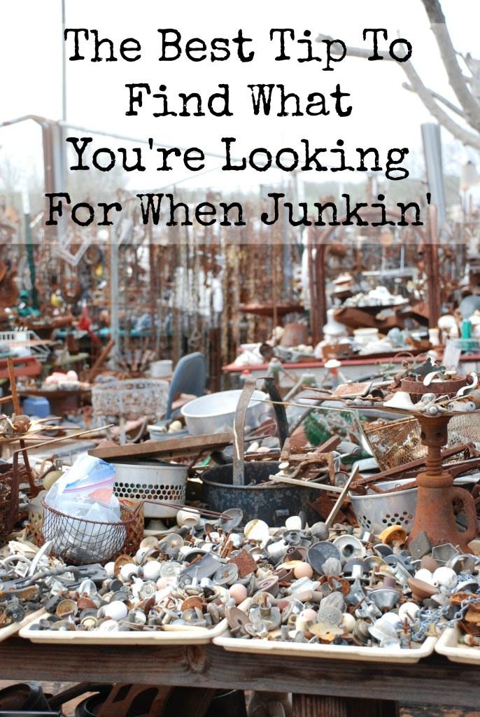 junkin-pic-1