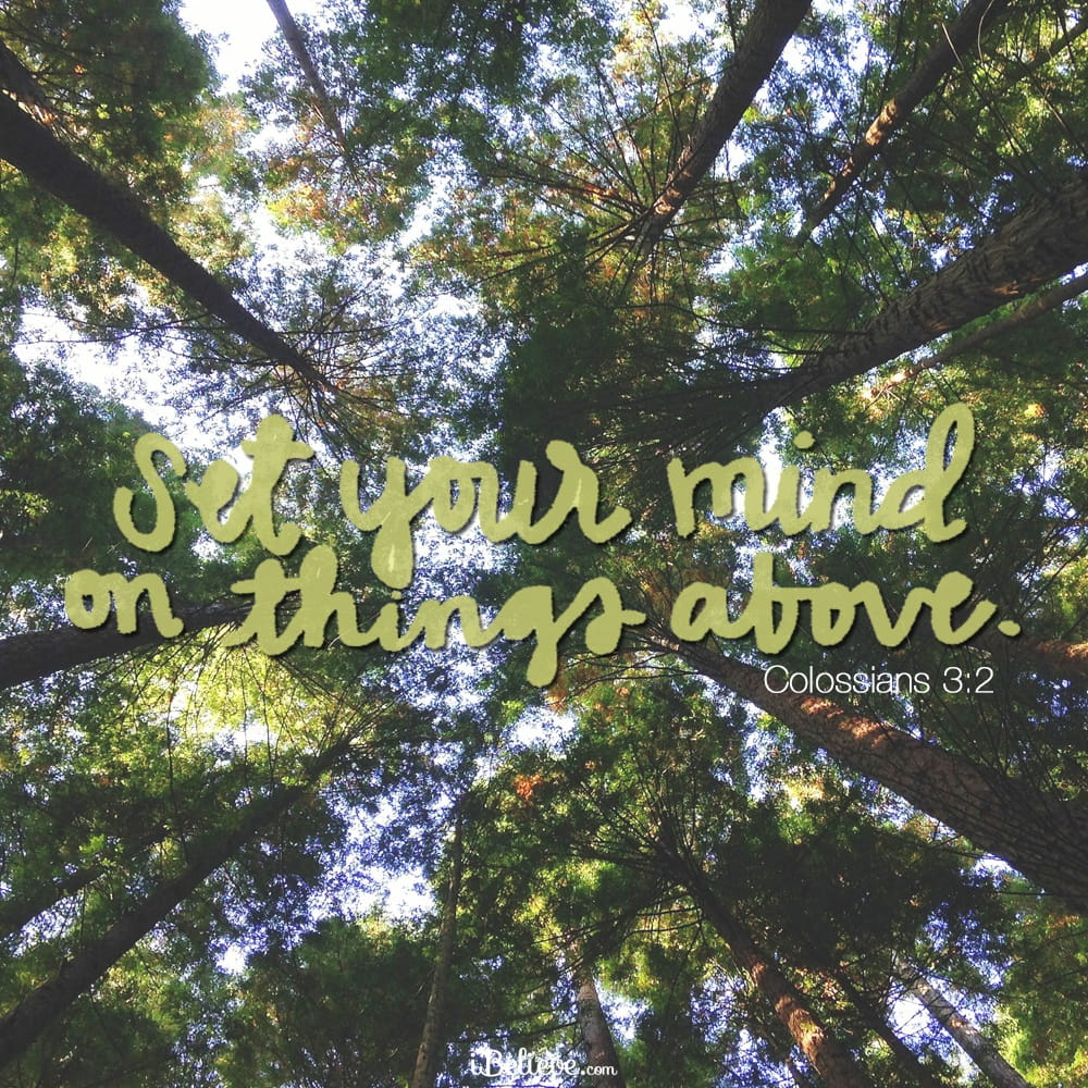 set-your-mind-on-things-above-colossians