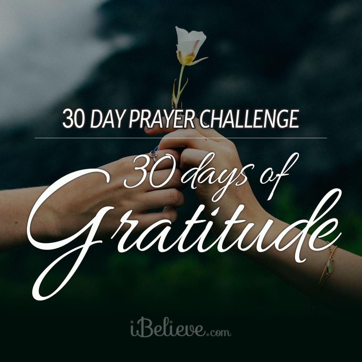 gratitude-prayer-challenge-square