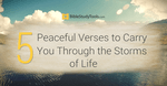 5 Peaceful Verses to Carry You Through the Storms of Life