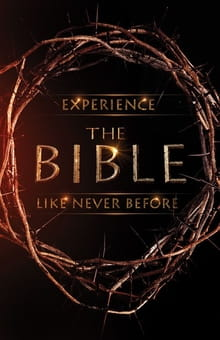 "<i>The Bible</i> Miniseries a ""Labor of Love"""