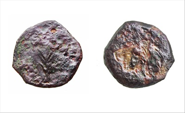 Coins found at Western Wall dig