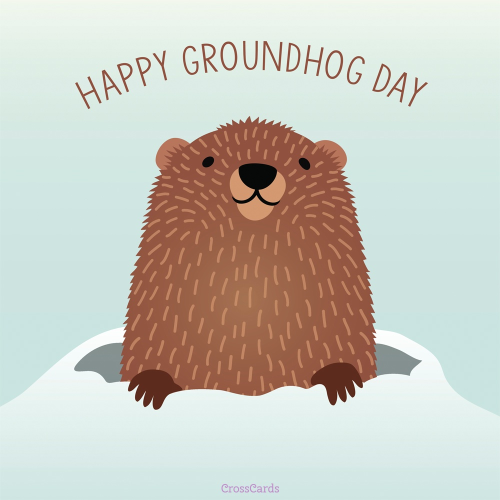 Rare image pertaining to ground hog printable