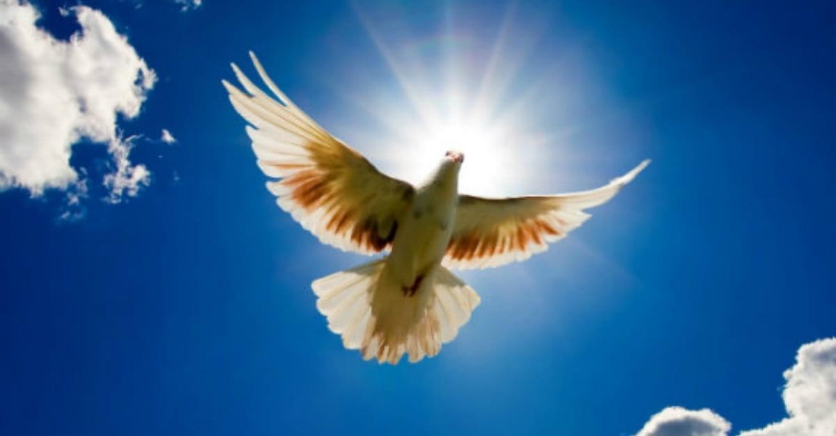 Were OT Believers Indwelt with the Spirit?
