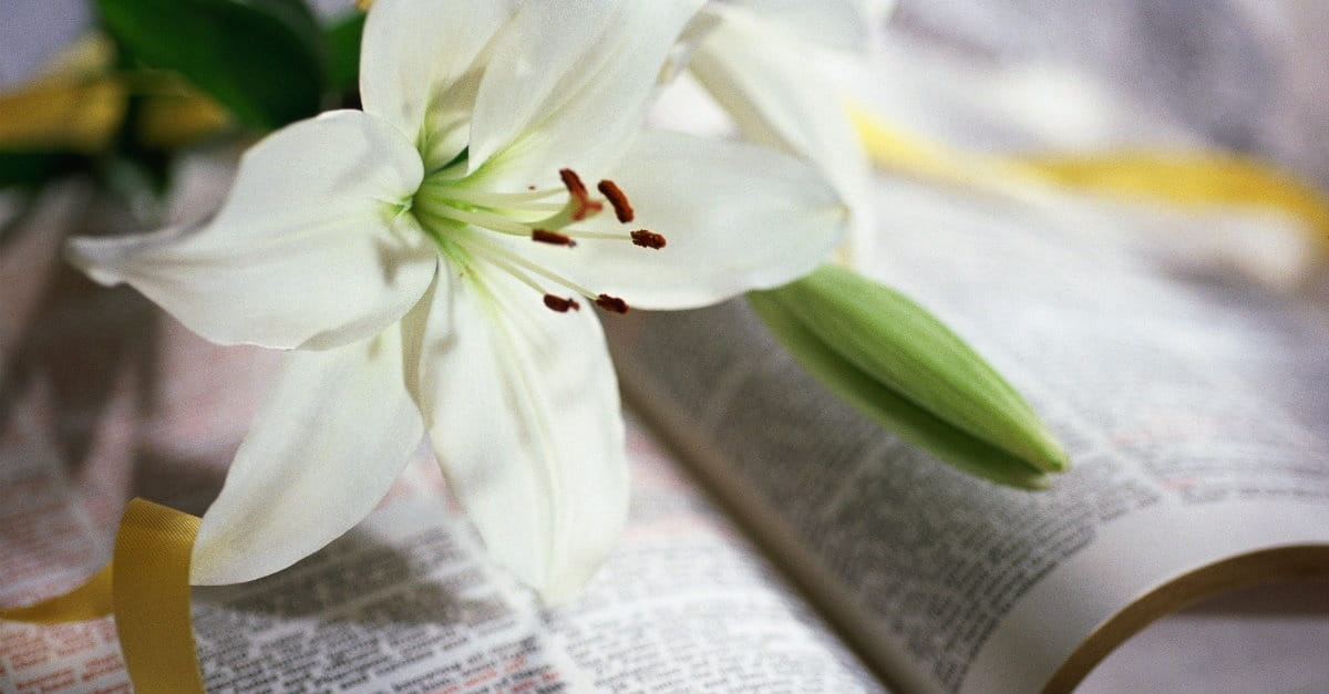 4 Things Christians Miss about Easter