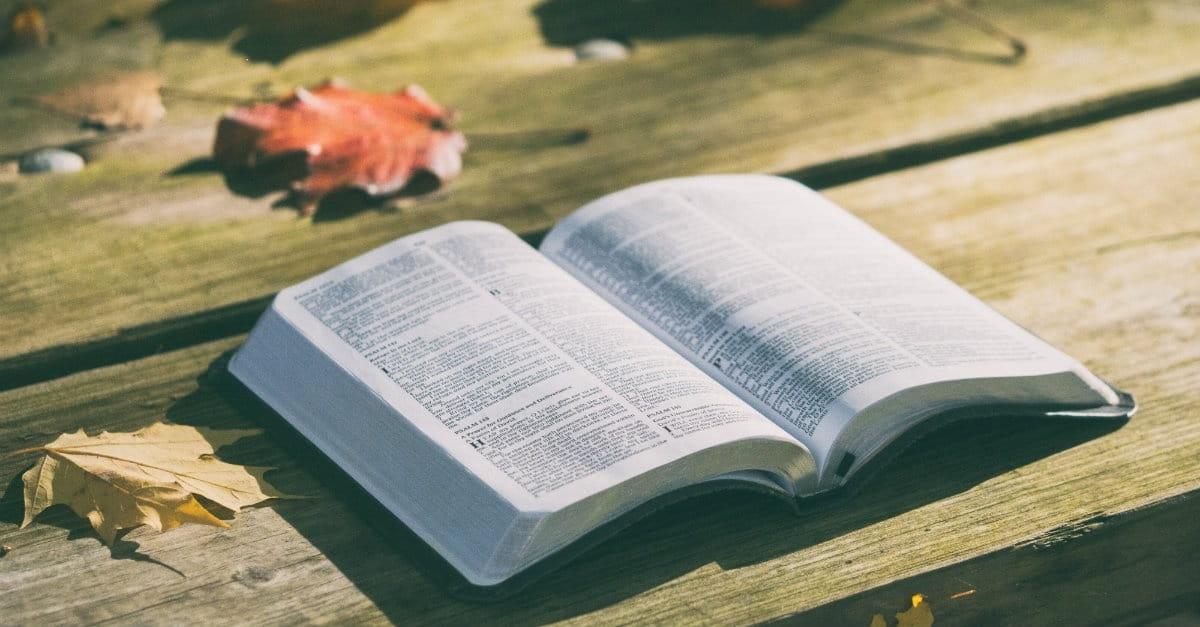 10 Encouraging Psalms for Thanksgiving