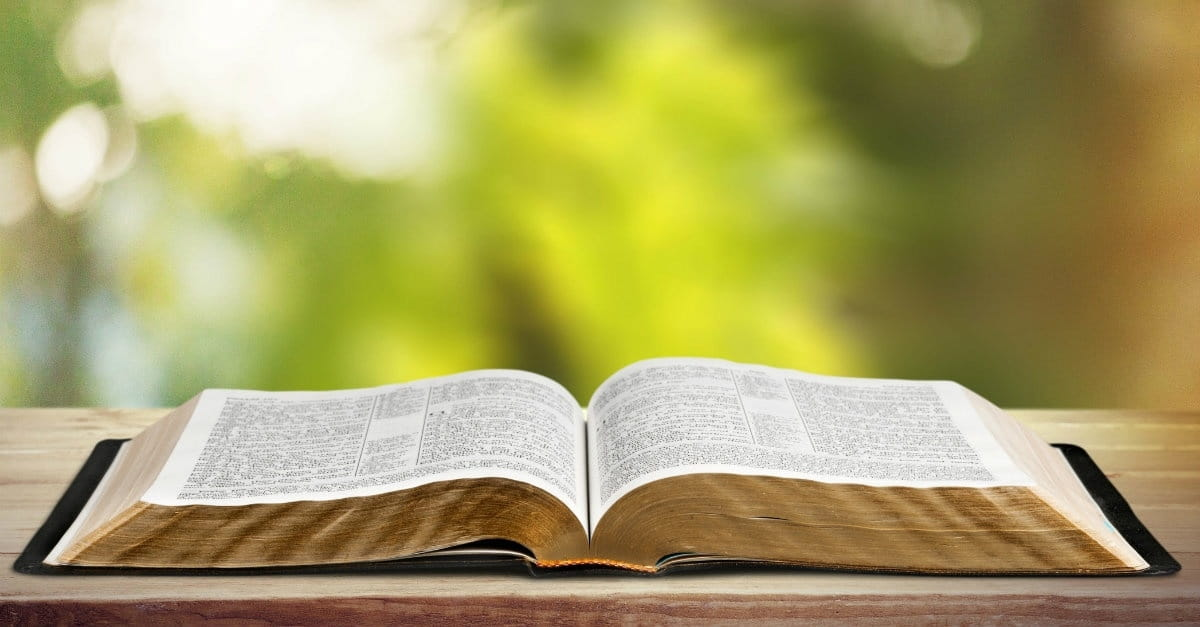 What to Do with Uncomfortable Bible Verses in the Psalms