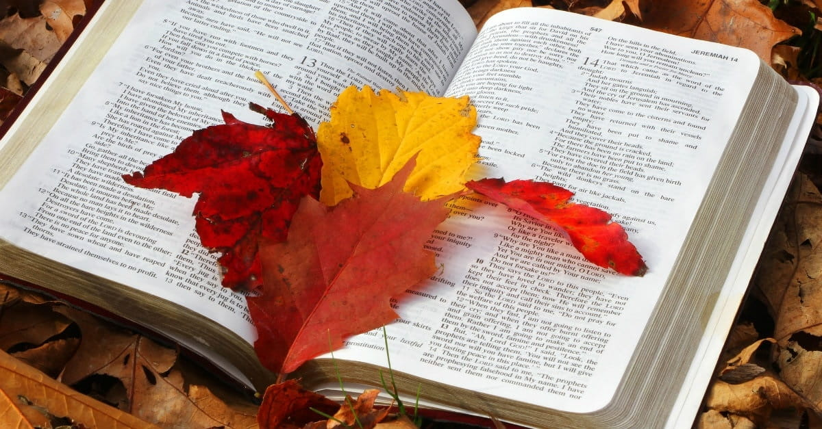 10 Psalms for Autumn Reflection