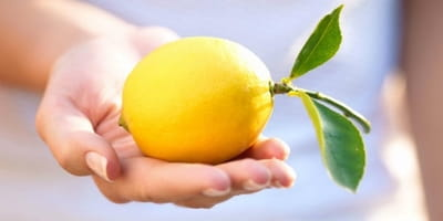 What to Do When Life Hands You Lemons
