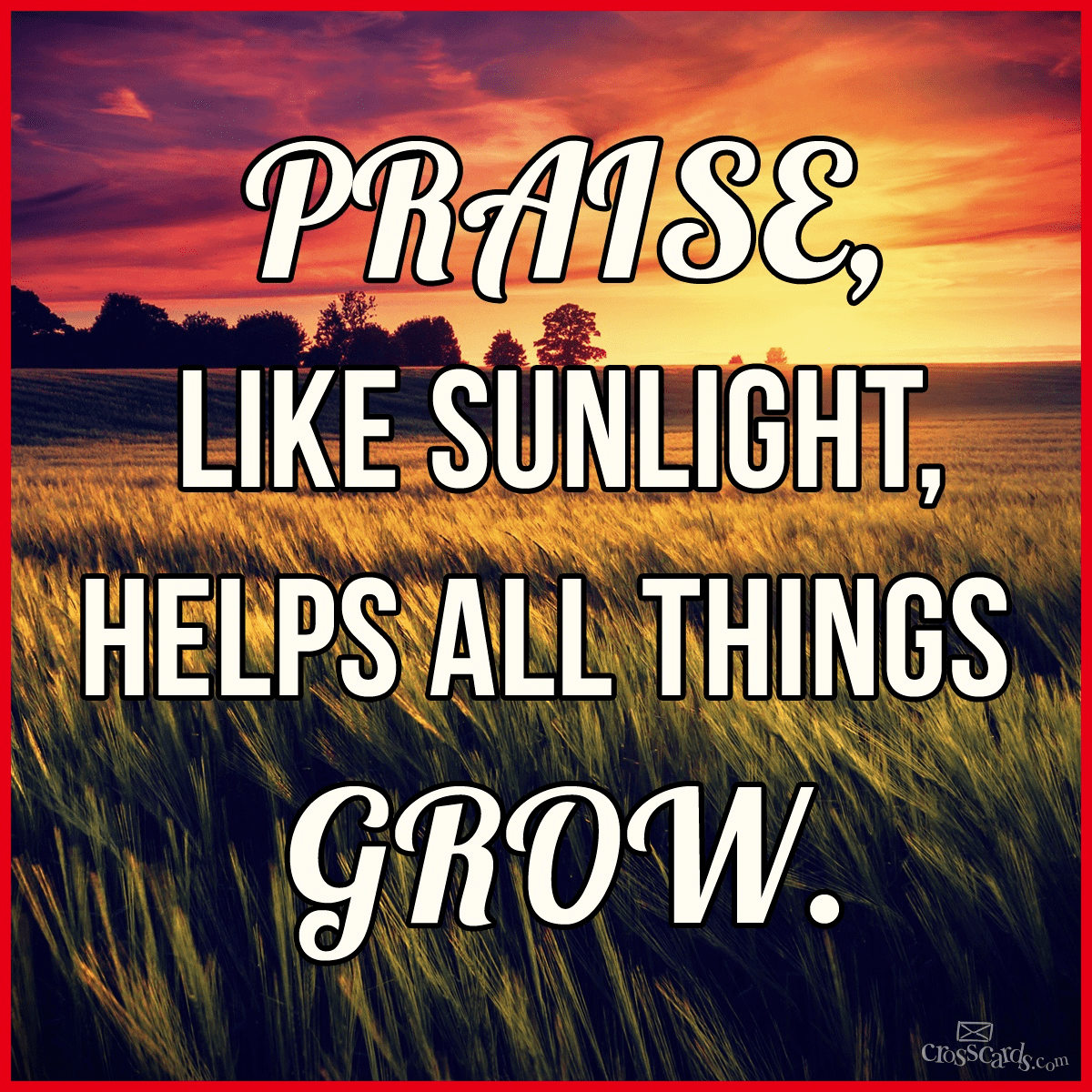 Praise, Like Sunlight, Helps All Things Grow