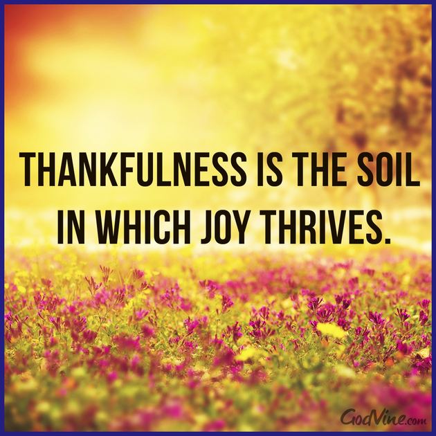 thankfulness is the soil in which joy thrives inspirations