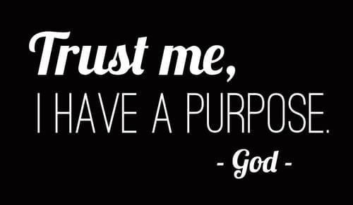 Trust God's Purpose