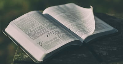 How to Apply the Psalms to Every Situation In Your Life