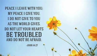 Don't Be Troubled, Don't Be Afraid!