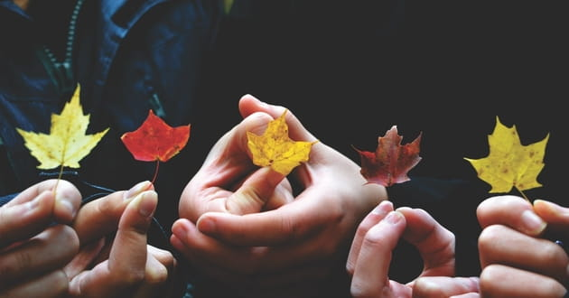 3 Ways to Keep the Spirit of Thanksgiving Alive All Year