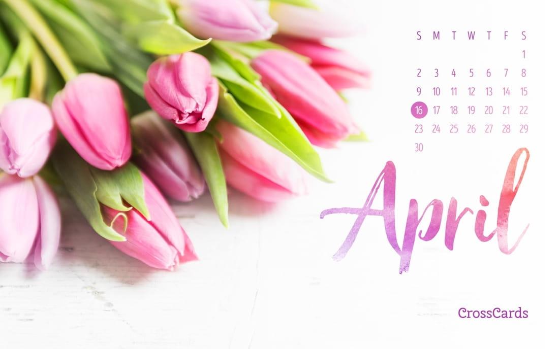 April 2017 - Tulips
