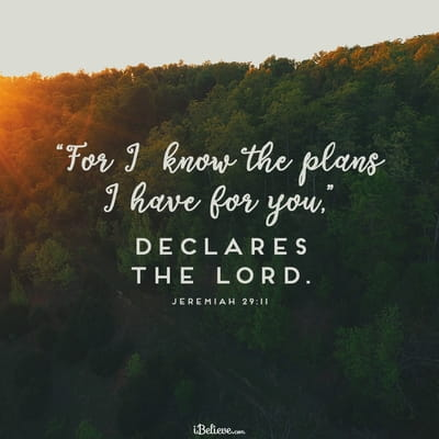 For I Know the Plans I Have for You Declares the Lord