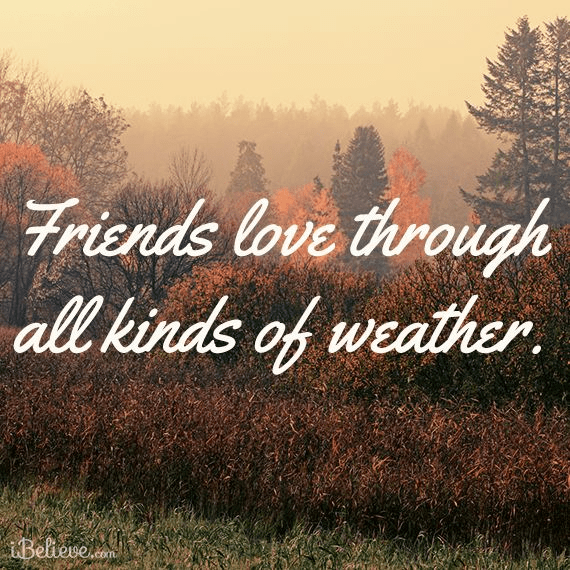 Friends Love Through All Kinds of Weather