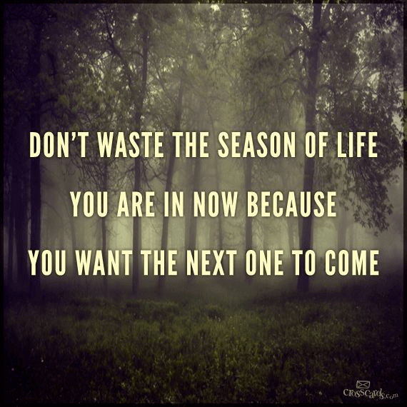Don't Waste The Season of Life You're In