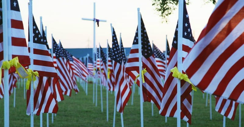 5 Things to Know about Veterans Day