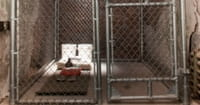 U.S. Government Admits Released Guantanamo Bay Prisoners Have Killed Americans