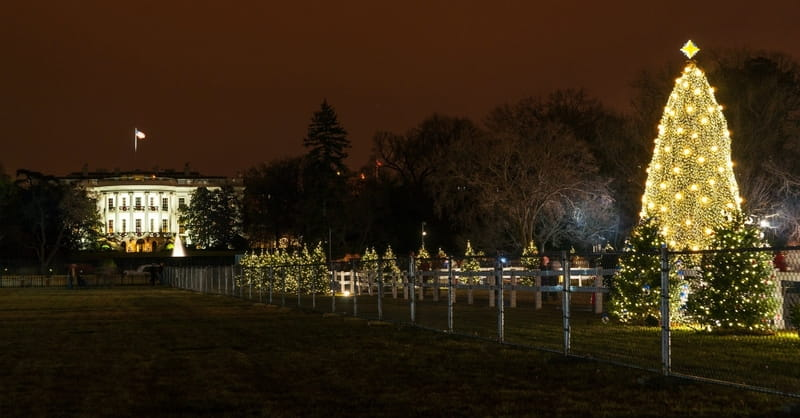 Washington D.C. Celebrates Christmas with National Christmas Tree Lighting Ceremony