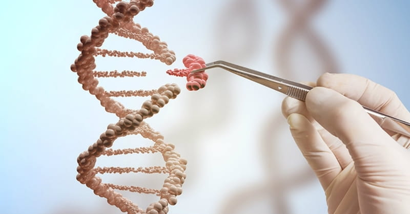 The Genetic Arms Race: Human Dignity at Stake