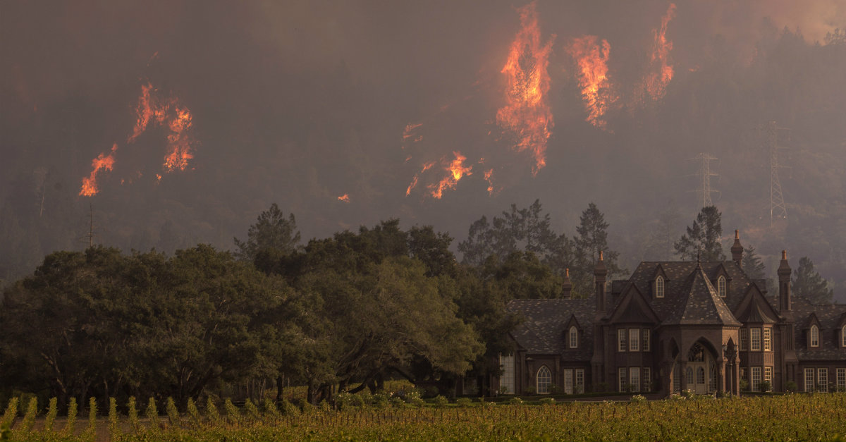 California Fire Survivors Respond Unexpectedly to Loss of Homes