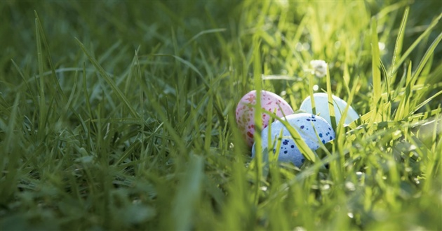5 Ways to Celebrate Easter without the Bunny