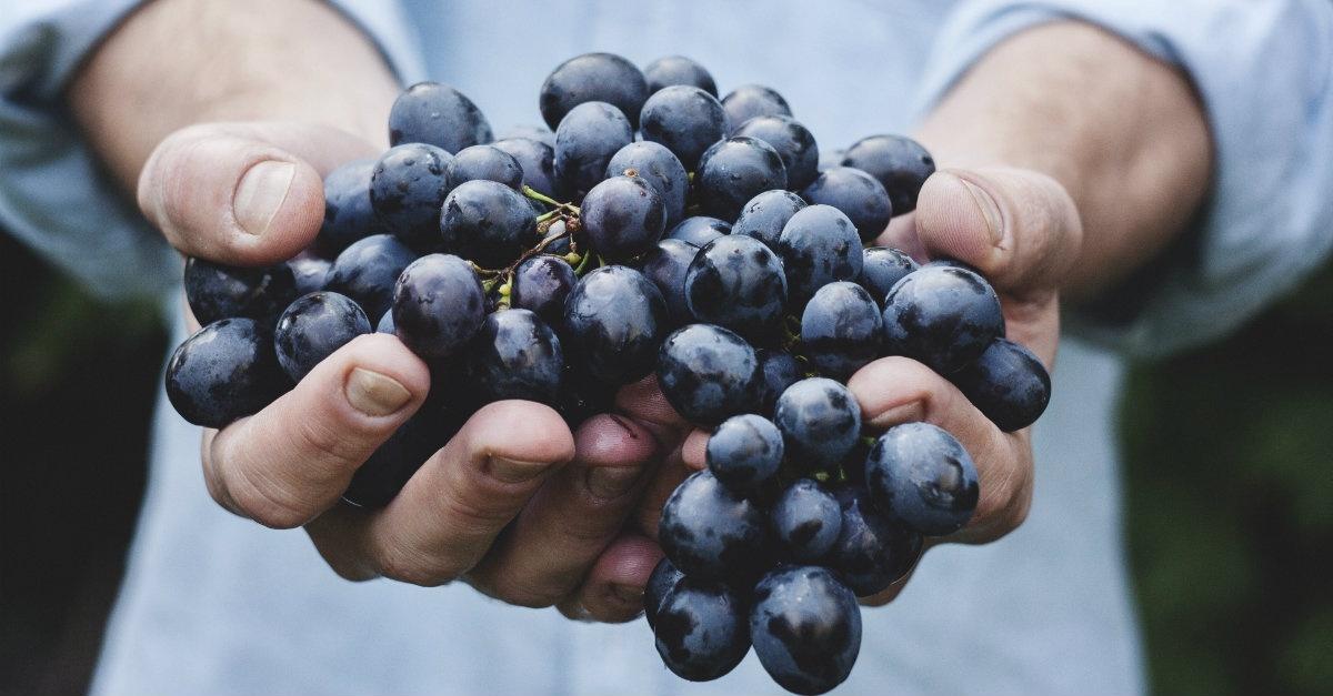 5 Ways to Bear Amazing Fruit