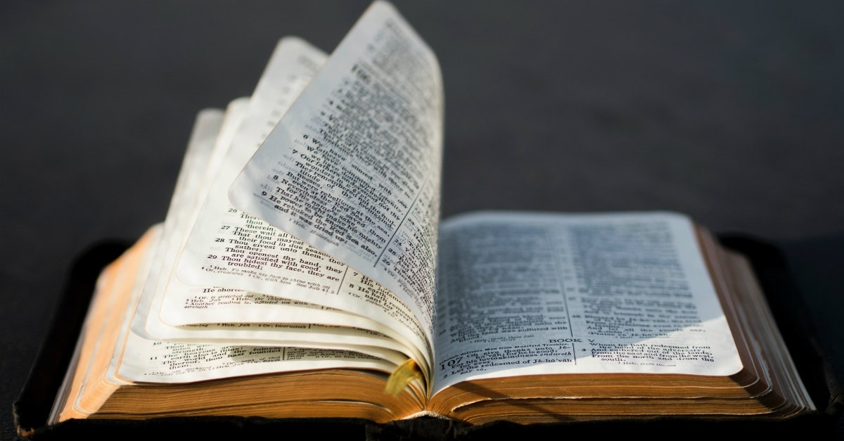 Why are There So Many Different Interpretations of the Bible?