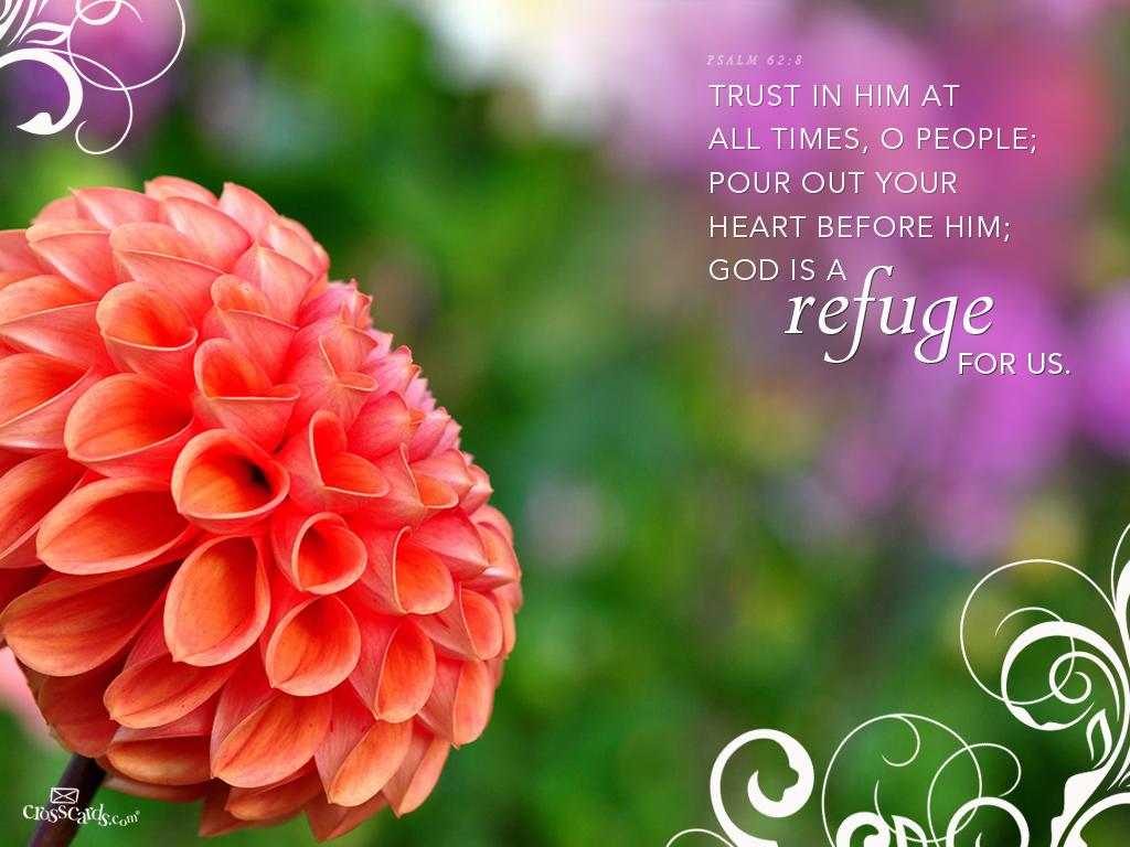Refuge Wallpaper