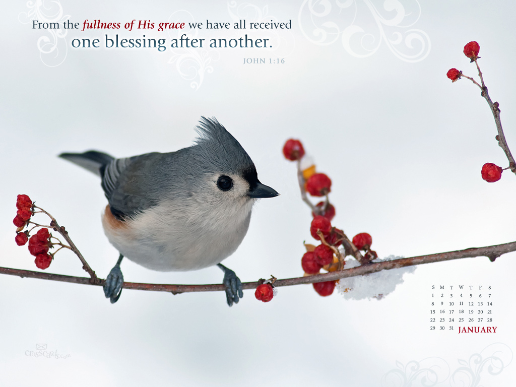 Jan 2012 - John 1:16 - Wallpaper