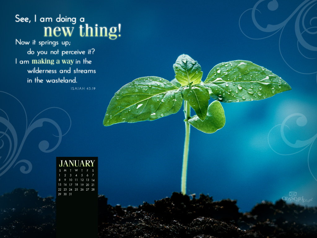 Jan 2012 - New Thing - Wallpaper