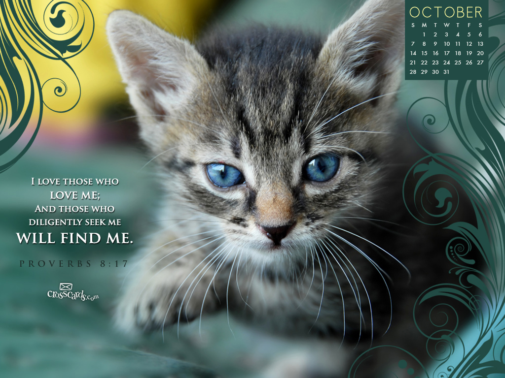 Oct 2012 - Seek Me