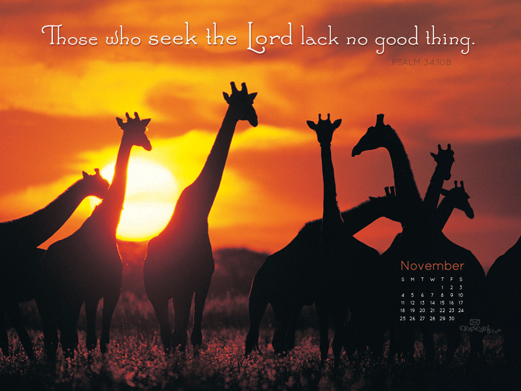 Nov 2012 - No Lack - Wallpaper