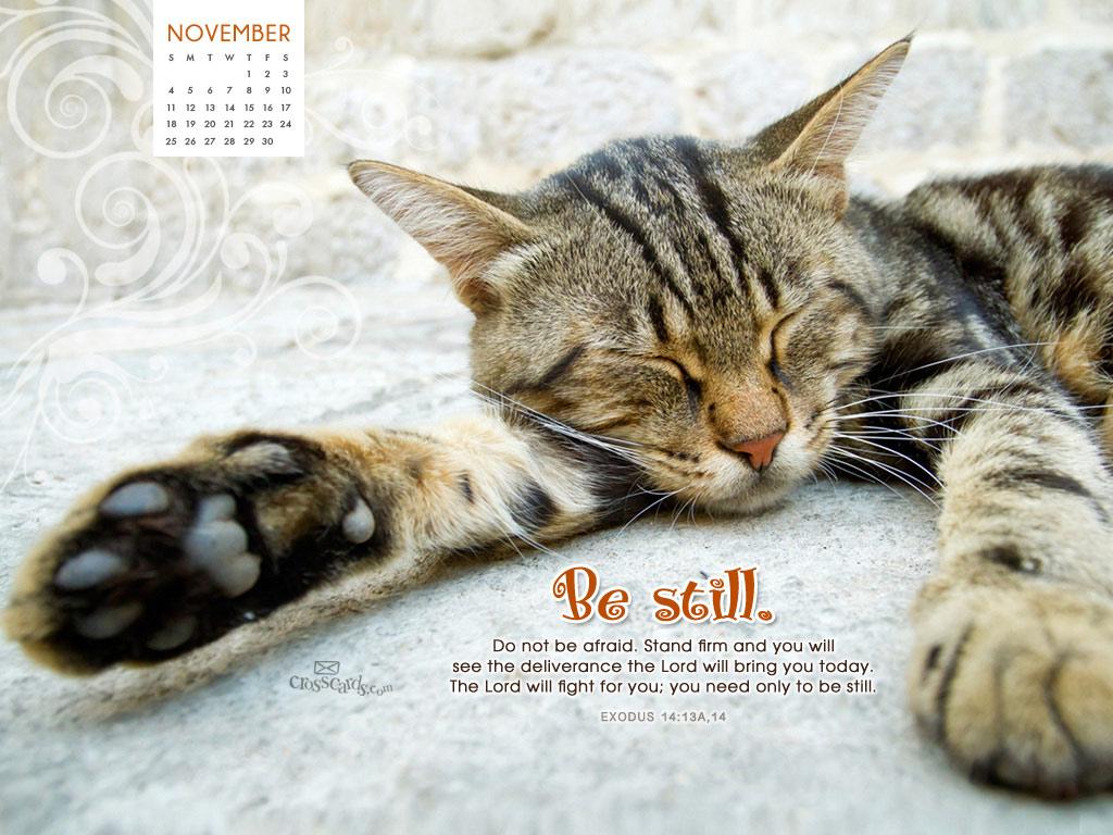 Nov 2012 - Be Still
