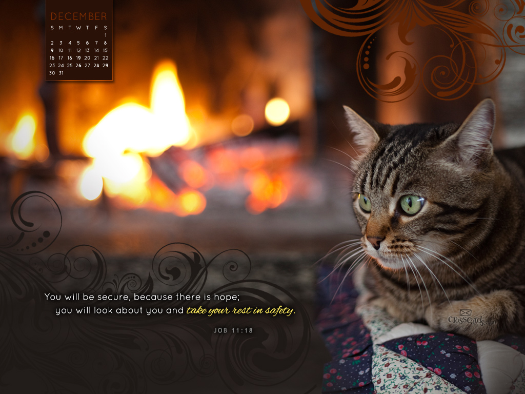 Dec 2012 - Restful Cat - Wallpaper