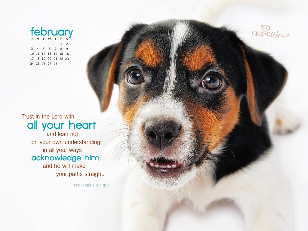 Feb 2013 - Proverbs 3:5-6 NIV