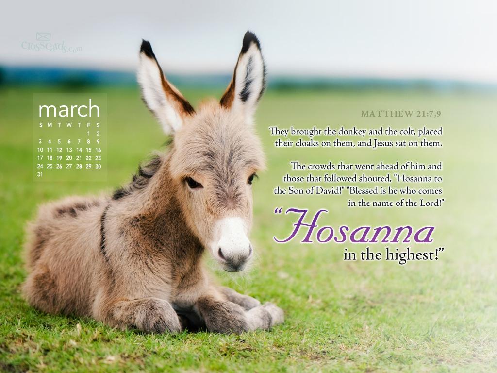 March 2013 - Hosanna