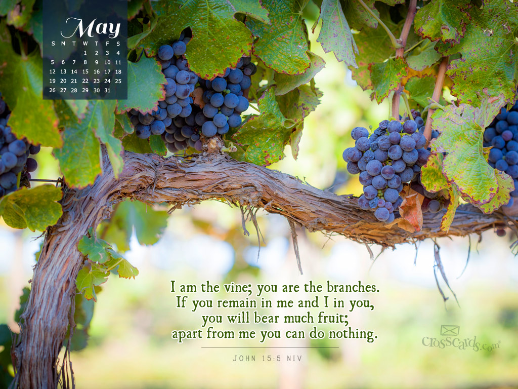 May 2013 - John 15:5 NIV - Wallpaper