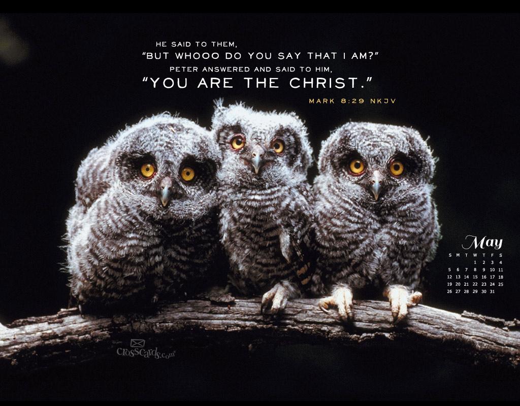 May 2013 - Mark 8:29 NKJV
