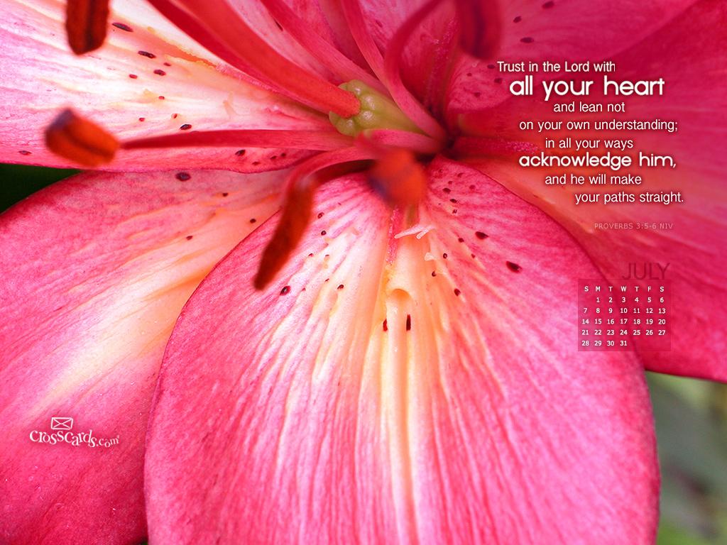 July 2013 - Proverbs 3:5-6 NIV