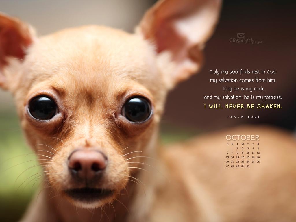 Oct 2013 - Psalm 62:1